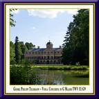 Telemann: Viola Concerto in G Major, TWV 51:G9 (Live)
