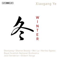 Xiaogang Ye - Winter