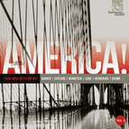 America, Vol. 3: From Modern to Pop Art