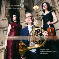 Brahms: Horn Trio & Violin Sonatas