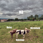 H3: Heinz, Holzman, Hirshfield