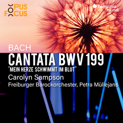 Bach: Cantata, BWV 199