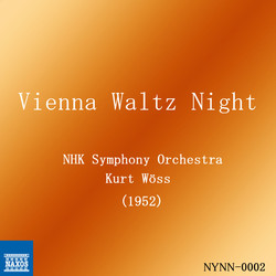 Vienna Waltz Night