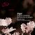 Elgar: Enigma Variations, Introduction & Allegro