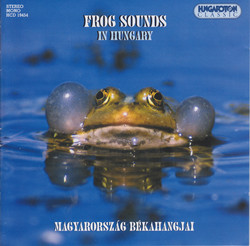 Frog Sounds In Hungary