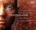 Graun: Montezuma