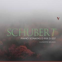Schubert: Piano Sonatas, D. 959 & D. 537