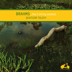 Brahms: The 2 String Sextets
