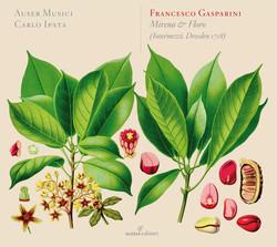 Gasparini: Mirena e Floro