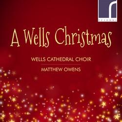 A Wells Christmas