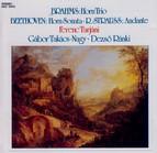 Brahms: Horn Trio, Op. 40 / Beethoven: Horn Sonata, Op. 17 / Strauss, R.: Andante