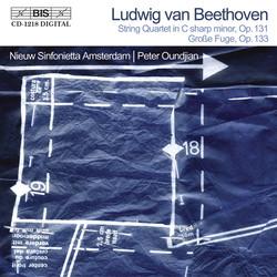 Beethoven - Grosse Fuge (for string orchestra)