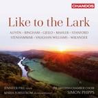 Like to the Lark
