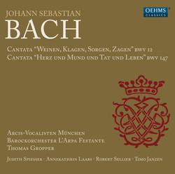 Bach: Cantatas, BWV 12 & 147