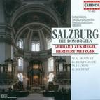 Organ Recital: Metzger, Heribert / Zukriegel, Gerhard - Buxtehude, D. / Bruna, P. / Piazza, G. / Muffat, G. / Haydn, M. / Eberlin, J.E.