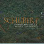Schubert: Piano Sonatas D. 958, D. 784 & Other Works