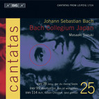J.S. Bach - Cantatas, Vol.25 (BWV 78, 99 and 114)