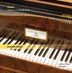 Chopin: Piano Sonata No. 2, Op. 35 & 24 Préludes, Op. 28