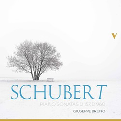 Schubert: Piano Sonatas, D. 157 & 960
