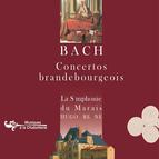 Bach: Concertos Brandebourgeois, BWV 1046-51