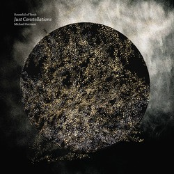 Michael Harrison: Just Constellations