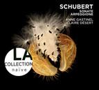 Schubert: Sonate Arpeggione - Sonatina, D. 384 -  Lieder transcriptions