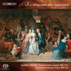 J.S. Bach - Secular Cantatas, Volume 3