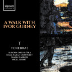 A Walk With Ivor Gurney